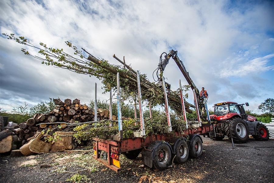 Woodchipping2